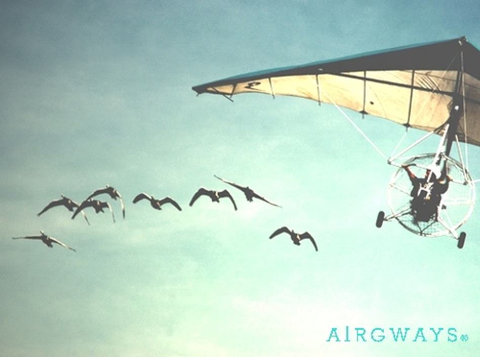 AIRGWAYS Fly-goose