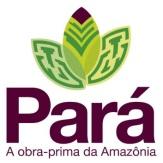 Resultado de imagen para Ver-o-Pará
