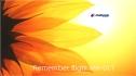 6947946-sunflower-background (2)