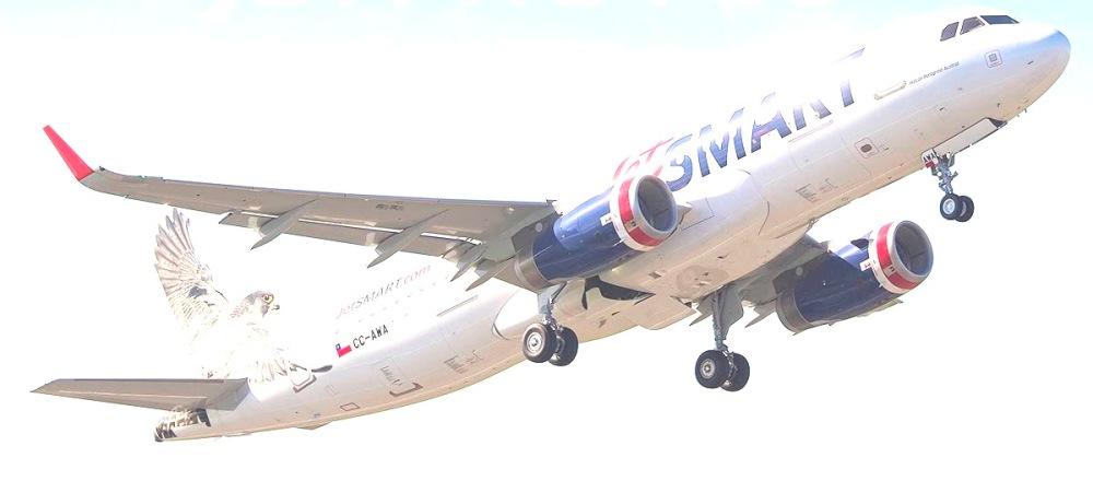 A320 JETSMART CC-AWA.jpg