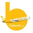 Resultado de imagen para flybondi png