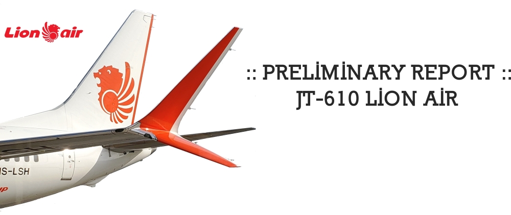 Lion-739-Winglet -002.jpg