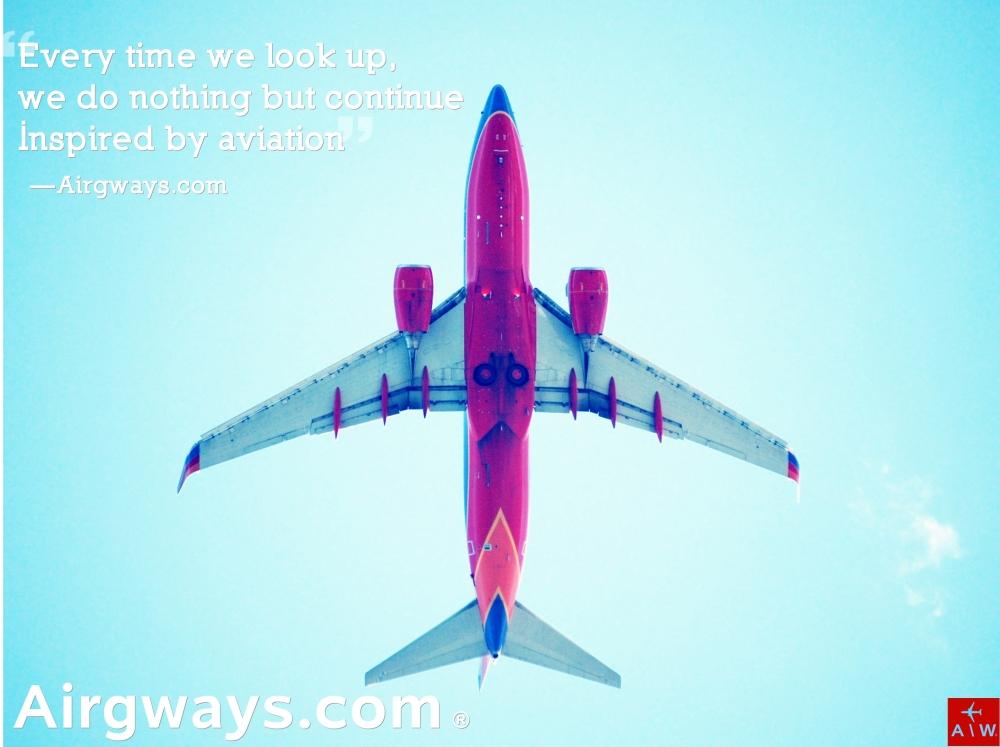 Southwest_Boeing_737-700_planview.jpg