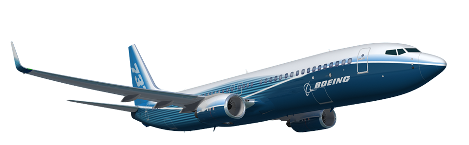 Resultado de imagen para boeing 737 next generation Gherkin Fork