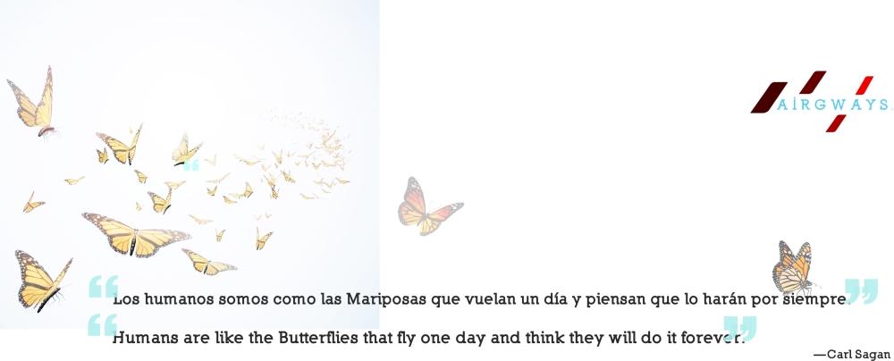 AW-Butterfly.jpg