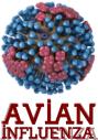 AW-H7N9