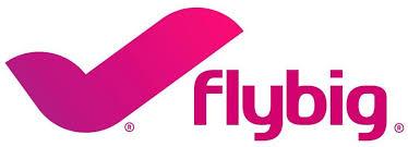 Flybig_Isologotype