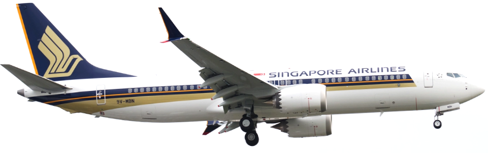 AW-Singapore Airlines_Boeing 7378001